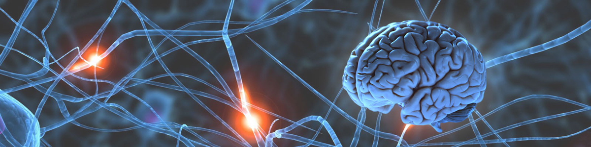 Best neurology hospital in delhi ncr